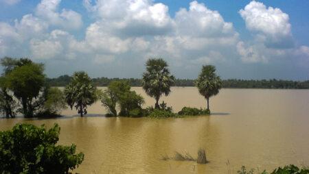 Dæmninger