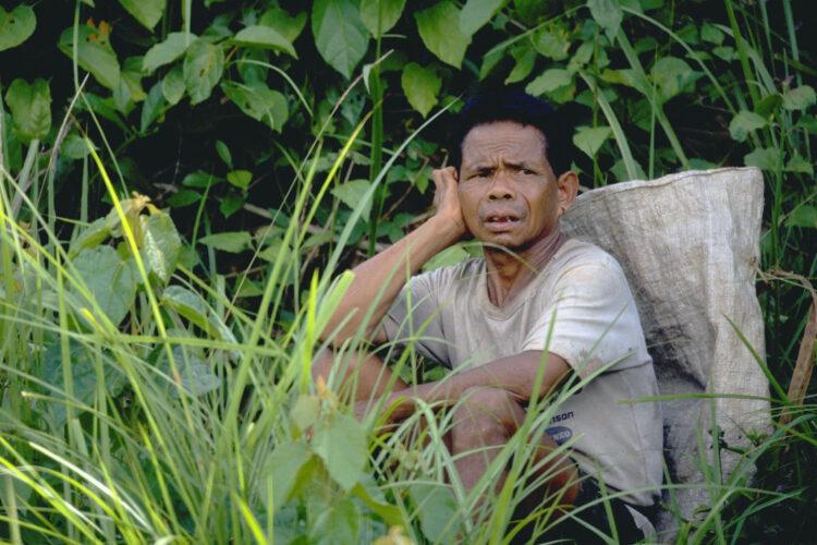 Oliepalmearbejderen i Malaysia