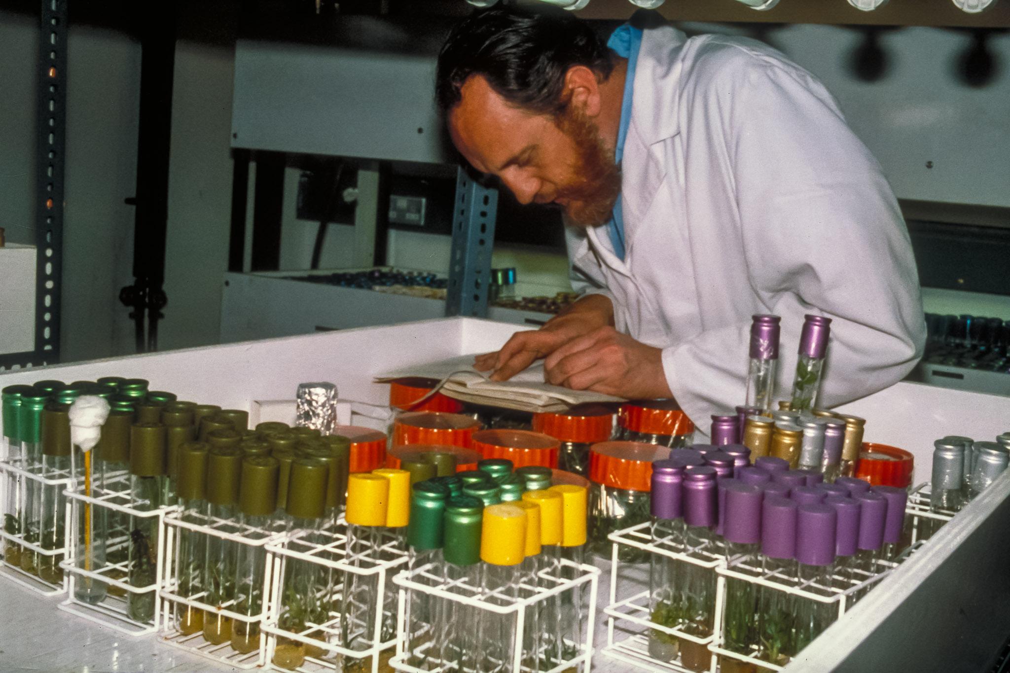 3000-produkter-fra-regnskoven-medicin-0288-IMG0028