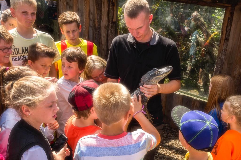 Krokodille Zoo Falster Edit