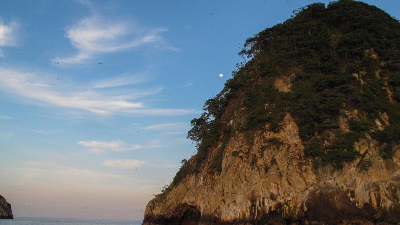 En ø i stillehavet